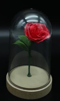 rosa la bella e la bestia